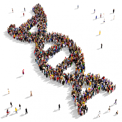 human genome project definition
